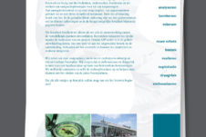 lay-out ontwerp a3p informatie vel